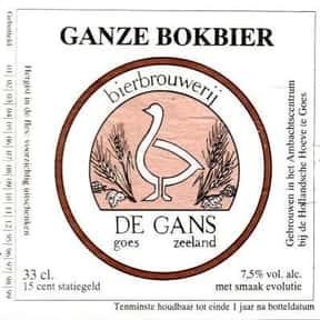 De Gans Ganze Bokbier is listed (or ranked) 21 on the list Beers with 7.5 Percent Alcohol Content