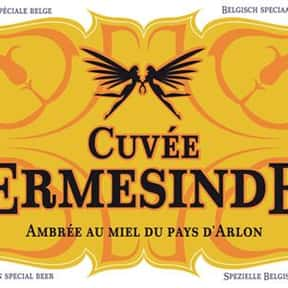 Ambly Cuvée Ermesinde is listed (or ranked) 16 on the list The Top Beers from Belgium