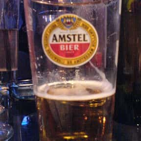 Amstel Lager is listed (or ranked) 8 on the list Beers with 5.0 Percent Alcohol Content