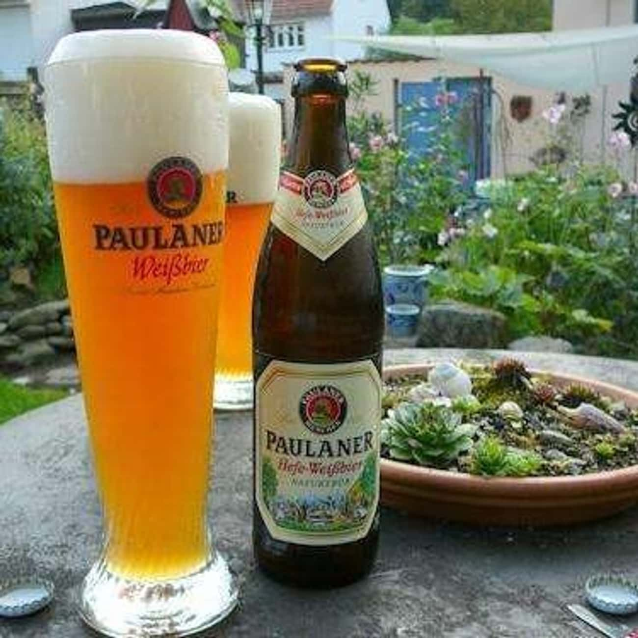 Burgerbraü Augsburg AG Musicus is listed (or ranked) 4 on the list Beers with 6.9 Percent Alcohol Content