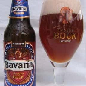 Bavaria Hooghe Bock is listed (or ranked) 11 on the list The Top Beers from Netherlands