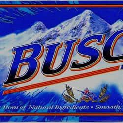 Anheuser-Busch Busch