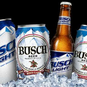 Busch is listed (or ranked) 5 on the list The Best Beers to Chug