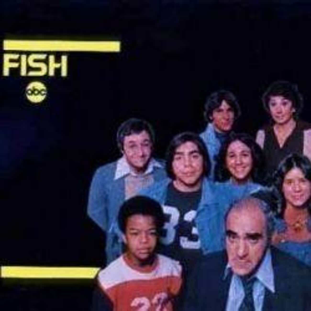 Fish is listed (or ranked) 4 on the list TV Shows Produced By Danny Arnold