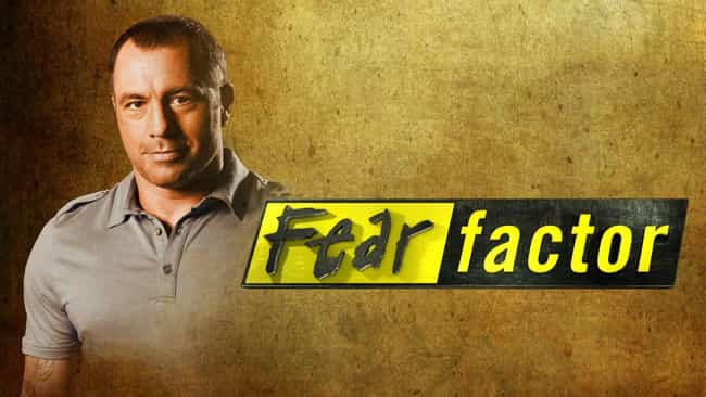 Fear Factor is listed (or ranked) 7 on the list What to Watch If You Love 'Survivor'