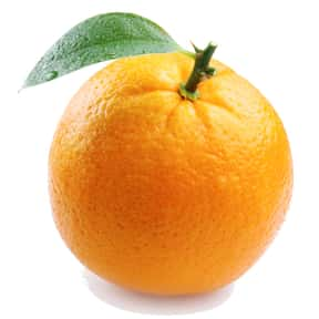 Orange is listed (or ranked) 12 on the list Low Fat foods