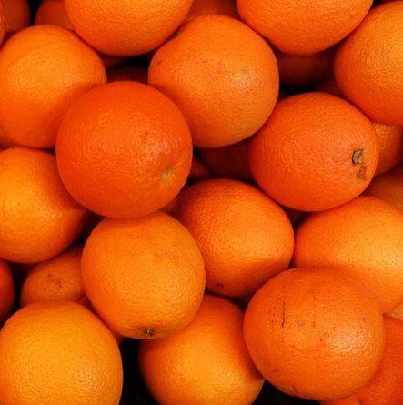 Random Very Best Citrus Fruits