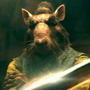 Splinter is listed (or ranked) 8 on the list The Best Teenage Mutant Ninja Turtles Characters