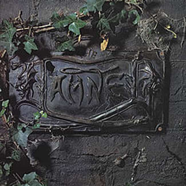 The Black Album is listed (or ranked) 2 on the list The Best Damned Albums of All Time