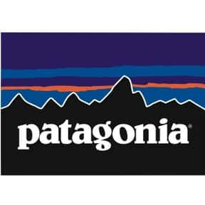 Patagonia is listed (or ranked) 2 on the list The Best Winter Clothing Brands