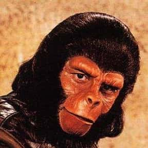 Planet of the Apes is listed (or ranked) 14 on the list The Best 1970s Adventure TV Series