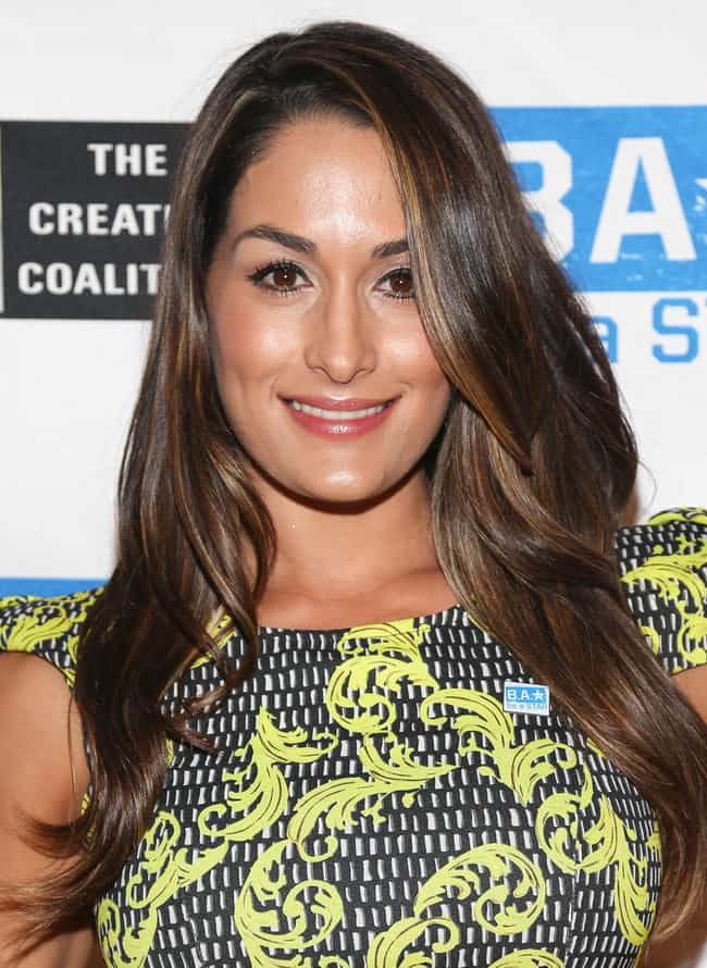 Nikki Bella is listed (or ranked) 3 on the list Dolph Ziggler Loves and Hookups