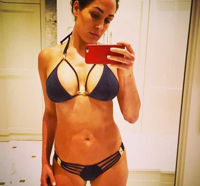 Nikki Bella is listed (or ranked) 3 on the list The Hottest WWE Divas on Instagram