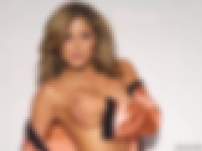 Brittney Palmer is listed (or ranked) 4 on the list Would You Please Move Your Hand? (Best Celebrity Hand Bras)