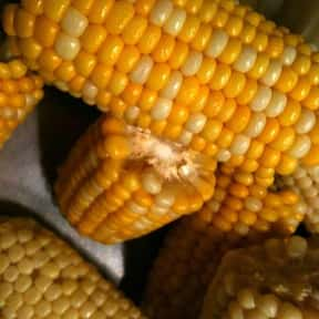 Corn on the cob is listed (or ranked) 4 on the list The Best Outdoor Summer Side Dishes