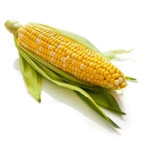 Corn on the Cob is listed (or ranked) 17 on the list The Most Delicious Thanksgiving Side Dishes