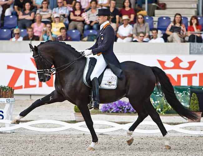 Edward Gal is listed (or ranked) 4 on the list Famous Equestrians from the Netherlands