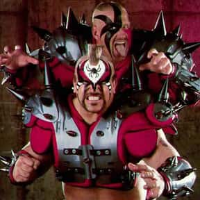 The Road Warriors is listed (or ranked) 13 on the list The Greatest Pro Wrestlers of All Time