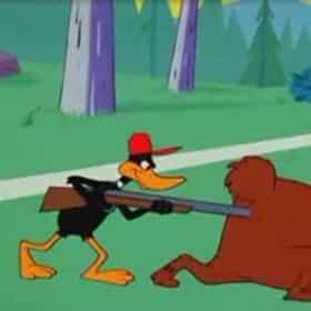 Suppressed Duck