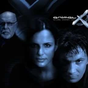 Animal X is listed (or ranked) 20 on the list The Best Cryptozoology TV Shows