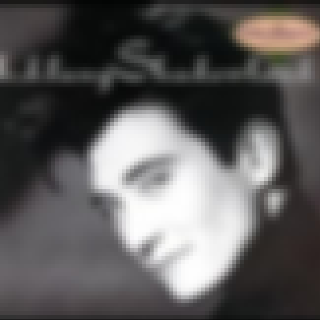 Shadowland is listed (or ranked) 2 on the list The Best K.d. Lang Albums of All Time