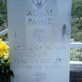 Adam Paine