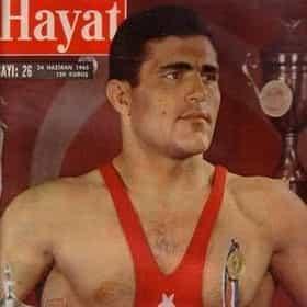 Ahmet Ayık