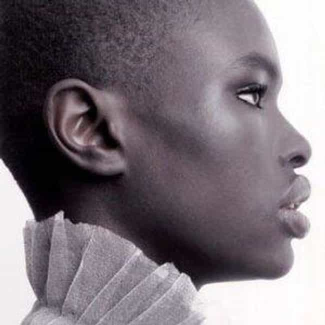 Ajuma Nasenyana is listed (or ranked) 2 on the list Famous African American Models