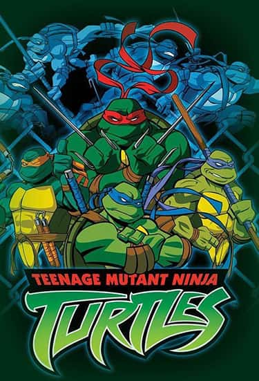 Teenage Mutant Ninja Turtles (2003 - 2009)