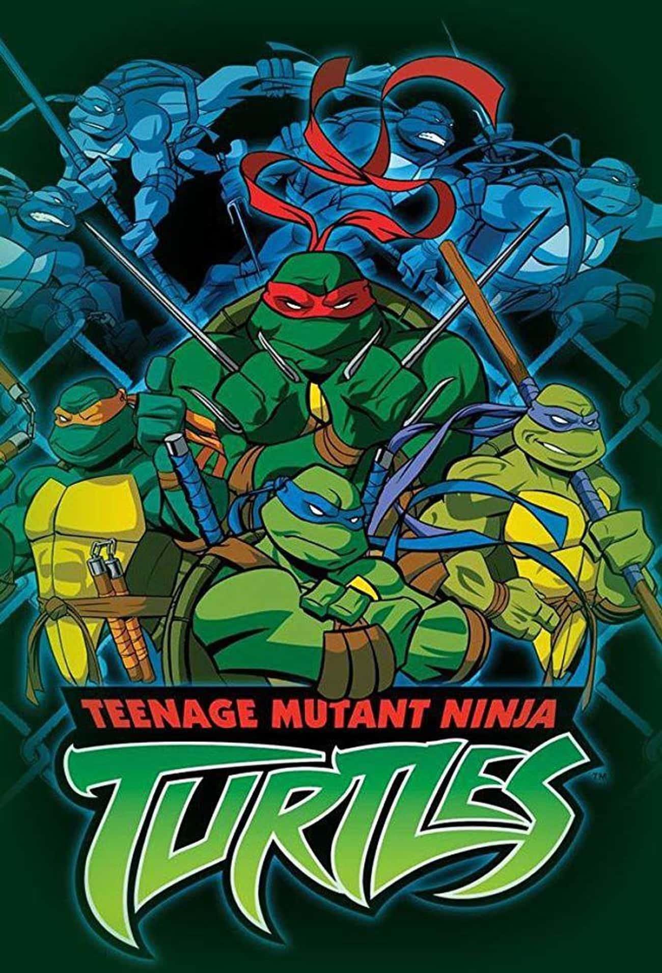 Teenage Mutant Ninja Turtles (2003 - 2009)
