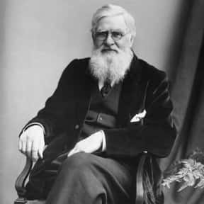 Alfred Russel Wallace is listed (or ranked) 17 on the list Famous People Named Alfred