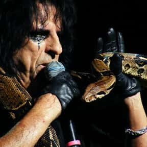 Alice Cooper is listed (or ranked) 5 on the list The Strangest Opening Act Bookings Ever
