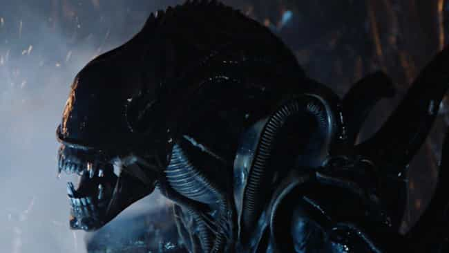 Alien is listed (or ranked) 1 on the list The 17 Scariest Aliens In Film
