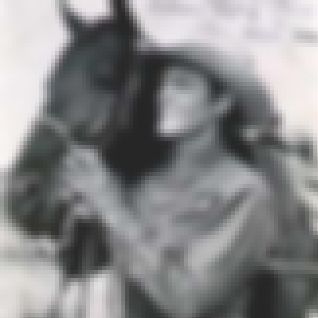 Allan Lane is listed (or ranked) 2 on the list Mister Ed Cast List