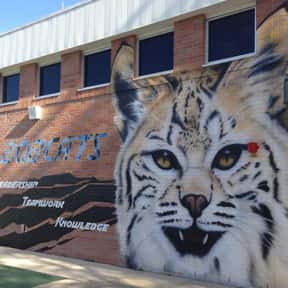 Spring Forest Middle School is listed (or ranked) 20 on the list Bobcat Mascot School List