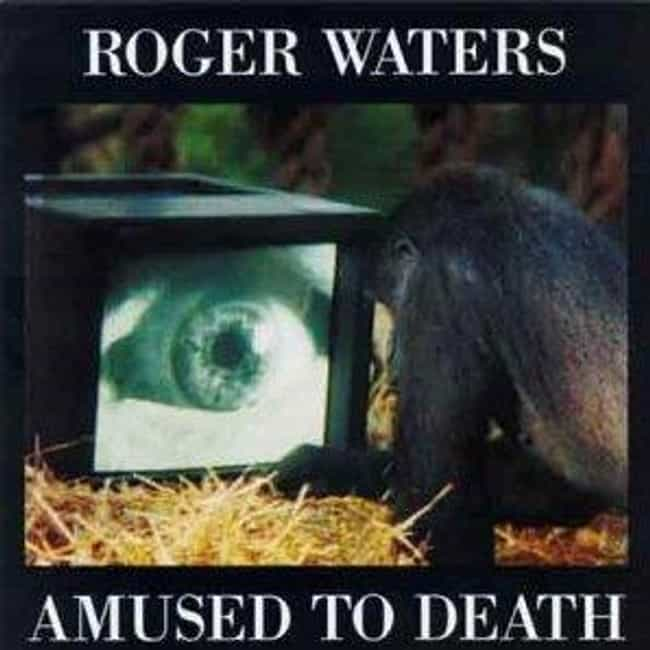 Amused to Death is listed (or ranked) 1 on the list The Best Roger Waters Albums of All Time
