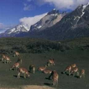 The Andes is listed (or ranked) 5 on the list The Most Beautiful Natural Wonders In The World