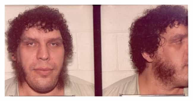 André the Giant is listed (or ranked) 8 on the list The Most Surprising Celebrity Mugshots