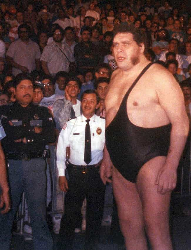 André the Giant is listed (or ranked) 2 on the list 26 Famous People Over 7 Feet Tall