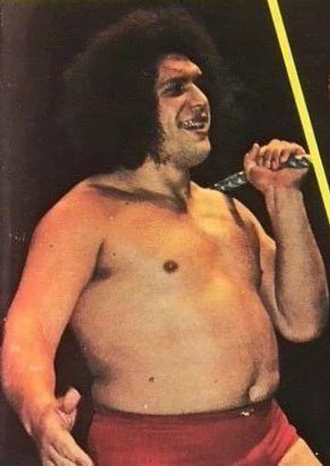 André the Giant ... is listed (or ranked) 1 on the list Which Historical Figure Would Win In An All-Night Drinking Competition?