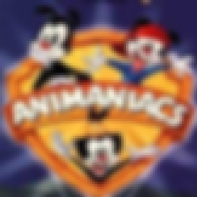Animaniacs is listed (or ranked) 2 on the list TV Shows Produced By Steven Spielberg