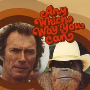 Any Which Way You Can is listed (or ranked) 24 on the list The Best Movies Starring Clint Eastwood