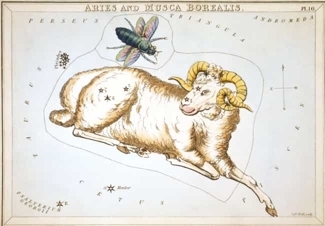Aries (March 21 - April ... is listed (or ranked) 1 on the list What Your Sign Says You Should Look For In A Partner