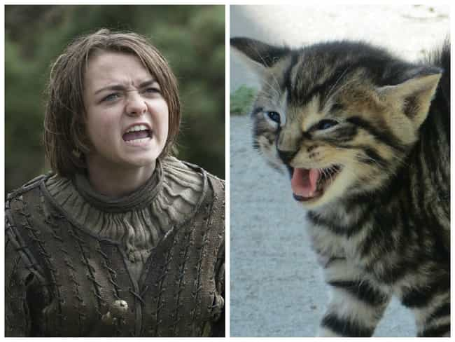 Arya Stark is listed (or ranked) 3 on the list Game of Thrones Characters and Their Animal Counterparts