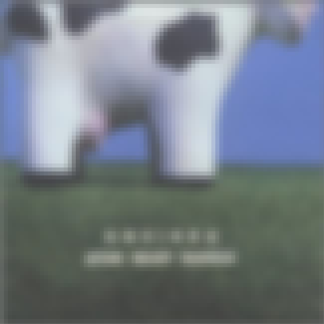 Atom Heart Madras is listed (or ranked) 4 on the list Pink Floyd Parody Album Covers