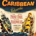 Caribbean is listed (or ranked) 41 on the list The Best Pirate Movies