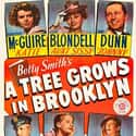 A Tree Grows in Brooklyn is listed (or ranked) 19 on the list The Best Father-Daughter Movies