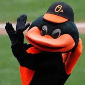The Oriole Bird is listed (or ranked) 4 on the list The Best Mascots in Major League Baseball