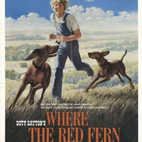 Where the Red Fern Grows is listed (or ranked) 20 on the list The Greatest Dog Movies Of All Time