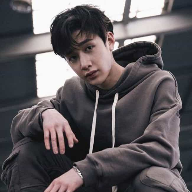 Bang Chan is listed (or ranked) 3 on the list The Best Kpop Idols From Australia, Ranked